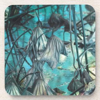 getrocknete Wasserlilie und Reflexion auf See im Getränkeuntersetzer