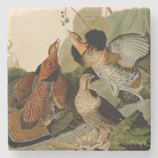 Getrumpfter Waldhuhn-Spiel-Vogel Audubon Steinuntersetzer