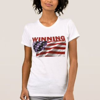Gewinnen - das USA
