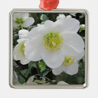 Gewohnheit personifizieren tun es sich Jahrestage Silbernes Ornament