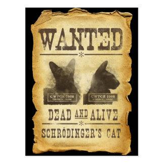 Gewollte Tote und lebendig.  Schroedingers Katze Postkarten