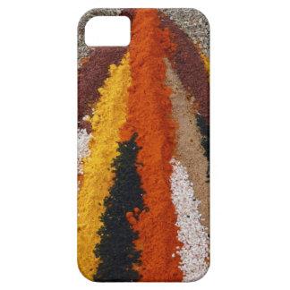Gewürz-Paprika-Gewürz-Mischung iPhone 5 Fall iPhone 5 Hüllen