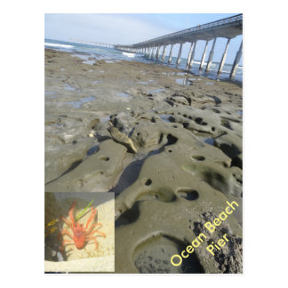 Gezeiten- Poolpostkarte des Ozean-Strand-Piers Postkarte