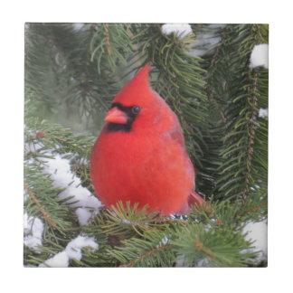 Gezierter Kardinal Keramikfliese