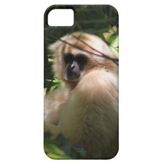 Gibbon-Affe iPhone 5 Etui