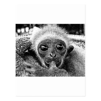 Gibbon-Baby Postkarte