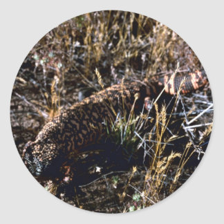 Gila-Krustenechse Runde Aufkleber