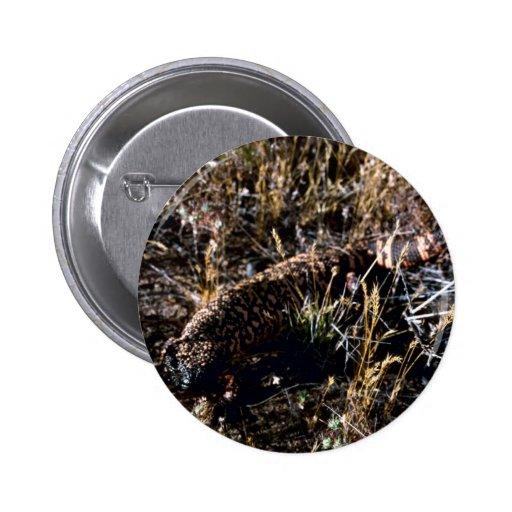 Gila-Krustenechse Buttons