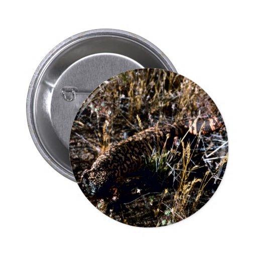 Gila-Krustenechse Button