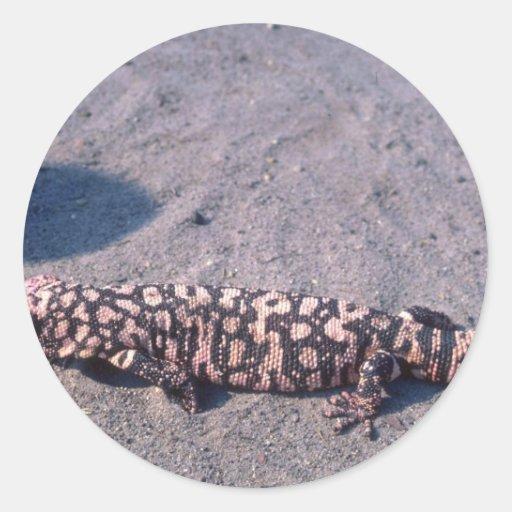 Gila-Krustenechse-Eidechse Aufkleber