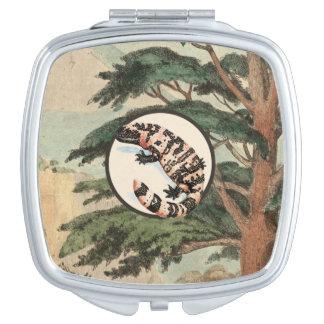 Gila-Krustenechse in der natürlicher Schminkspiegel