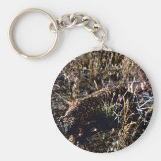 Gila-Krustenechse Schlüsselanhänger