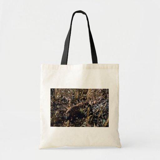 Gila-Krustenechse Tasche