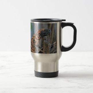 Gila-Krustenechse Kaffeetassen