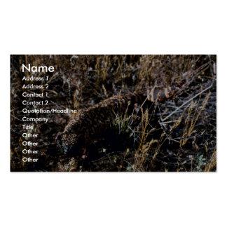 Gila-Krustenechse Visitenkarten Vorlagen