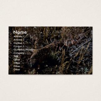 Gila-Krustenechse Visitenkarten