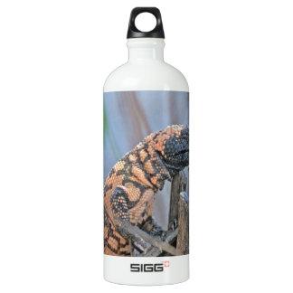 Gila-Krustenechse Wasserflaschen