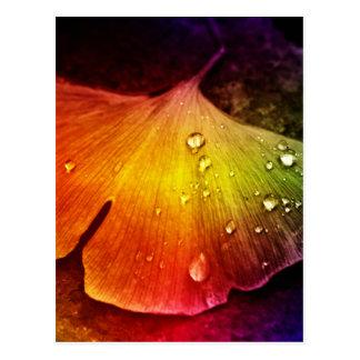 Gingkoblatt mehrfarbig durch Tutti Postkarte
