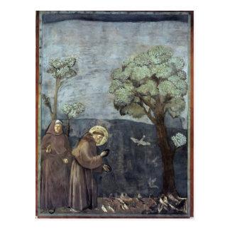 Giotto: St Francis, das zu den Vögeln predigt Postkarte