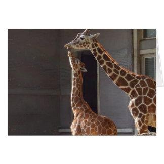 Giraffe ein vertrauten Moment Karte