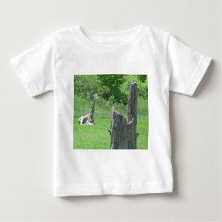 Giraffe hinter einem defekten Baum-Stumpf während Hemden