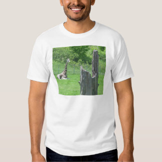 Giraffe hinter einem defekten Baum-Stumpf während T-shirt