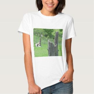 Giraffe hinter einem defekten Baum-Stumpf während Tshirts