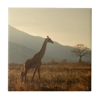 Giraffe in der Savanne Keramikfliese