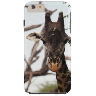 Giraffe iPhone Fall Tough iPhone 6 Plus Hülle