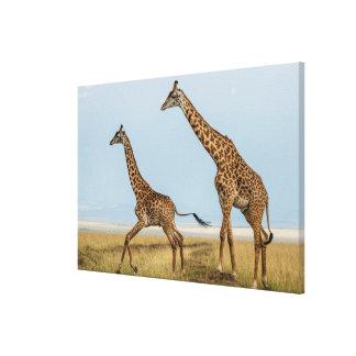 Giraffe und junger Betrieb Leinwanddruck