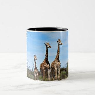 Giraffen-Familie Zweifarbige Tasse