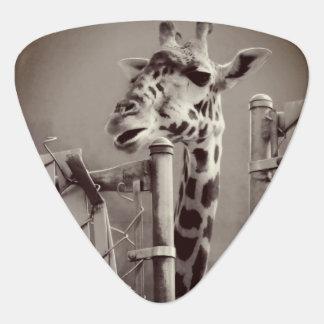 Giraffen-Fotografie - Vintage Art Plektron