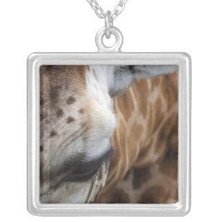 Giraffen-Halskette Halskette Mit Quadratischem Anhänger