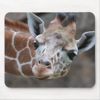Giraffen-Mausunterlage Mousepad