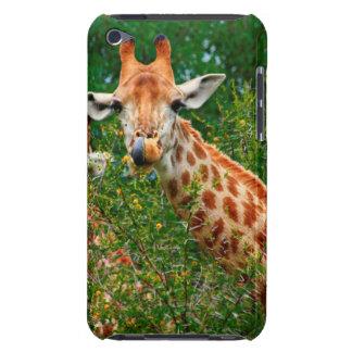 Giraffen-Porträt, Kruger Nationalpark iPod Case-Mate Hülle