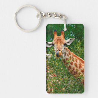Giraffen-Porträt, Kruger Nationalpark Schlüsselanhängern
