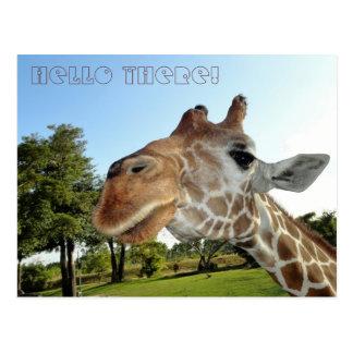 Giraffen-Postkarte/hallo dort! Postkarte