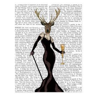 Glamour-Rotwild im Schwarzen Postkarte