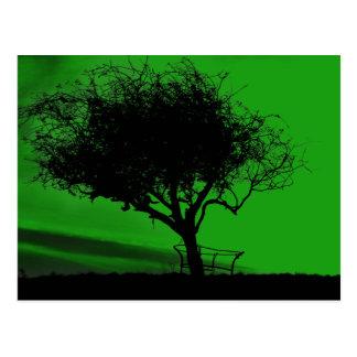 Glastonbury Weißdorn. Baum auf Hügel. Grünes Postkarte
