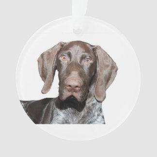 Glatte Graubär-Weihnachtsverzierung Ornament