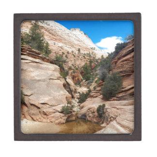 Glatter Felsen Zion Nationalpark Utah Kiste