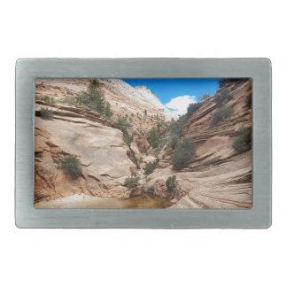 Glatter Felsen Zion Nationalpark Utah Rechteckige Gürtelschnallen