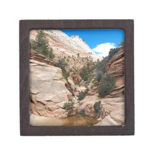 Glatter Felsen Zion Nationalpark Utah Schachtel