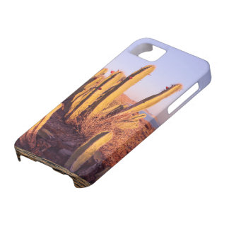 Glauben Sie der Wüste iPhone 5 Hülle
