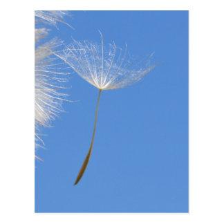 Glauben Sie frei - Fliegen-Löwenzahnsamen Postkarten