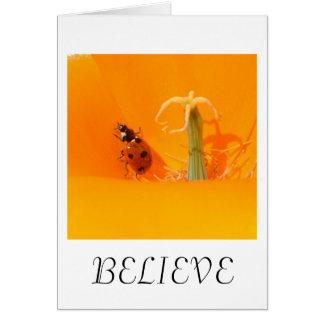Glauben Sie Marienkäfer und Mohnblume Karte