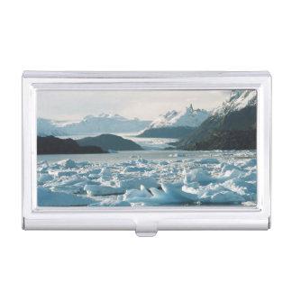 Glazial- Eisberge Visitenkarten Dose