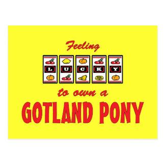 Glücklich zu eigenem ein Gotland-Pony-Spaß-Entwurf Postkarte