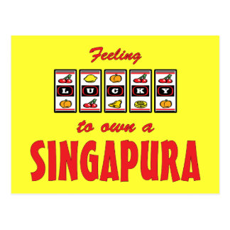 Glücklich zu eigenem ein Singapura Postkarte
