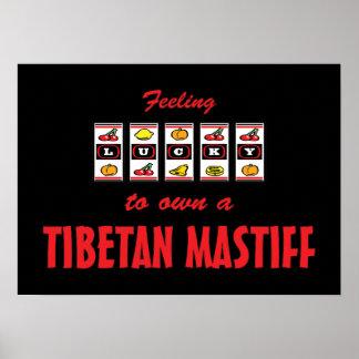 Glücklich zu eigenem ein tibetanischer Mastiff-Spa Plakatdruck